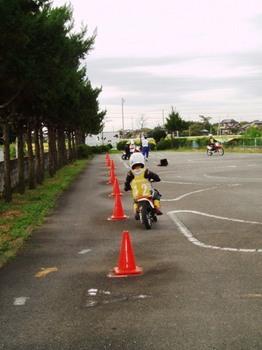 oyako5.jpg